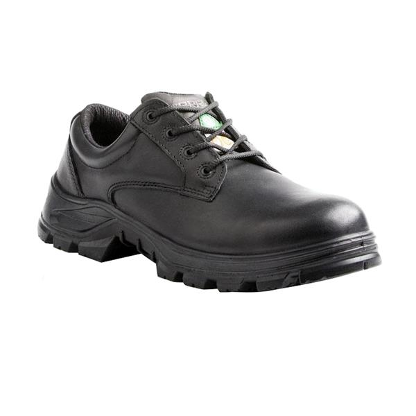 Terra - Men's Albany Safety Shoes