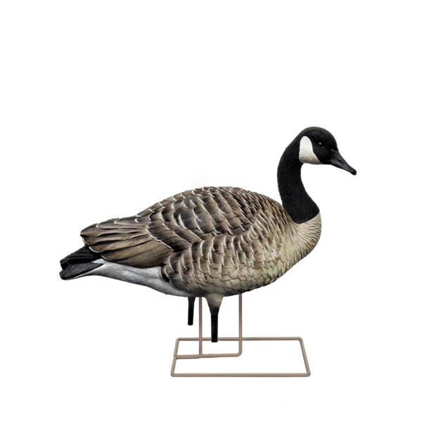 Avian X - AXF Walker Goose Decoys