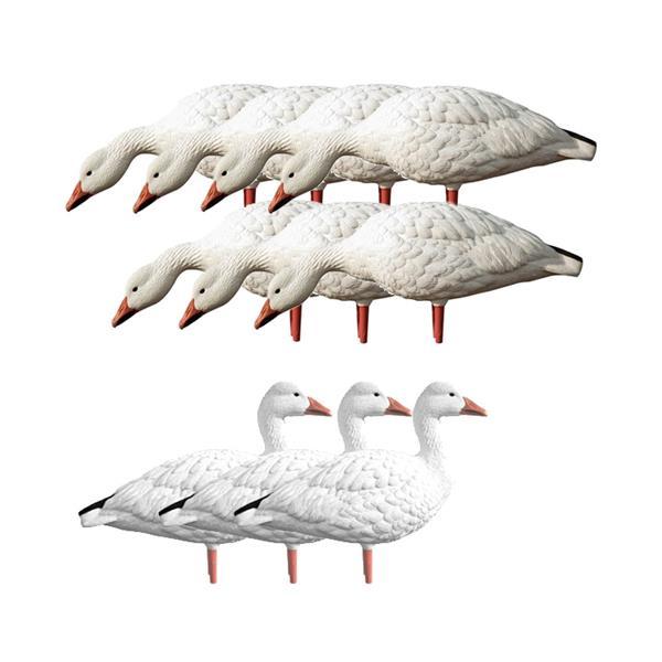Avian X - Appelants de Grande Oies des neiges Adult Snow Goose