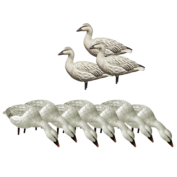 Avian X - 10 Full Body Juvenile Snow Gooses Decoys Set