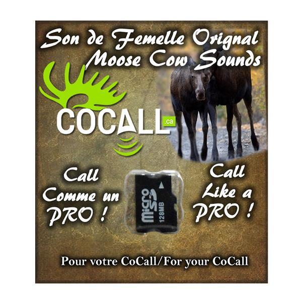 Cocall - Carte de sons d'orignal femelle