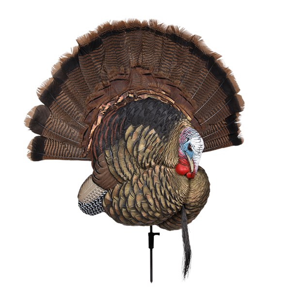 Avian X - Trophy Tom Turkey Decoy