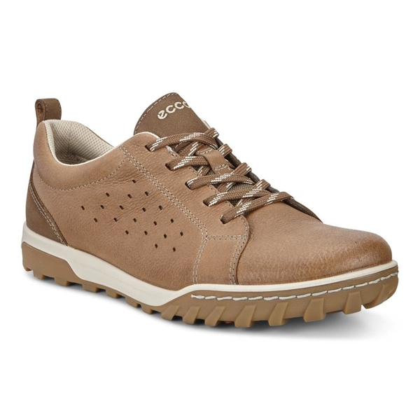 on sale 32097 b7f23 Ecco - Chaussures Urban Lifestyle pour homme
