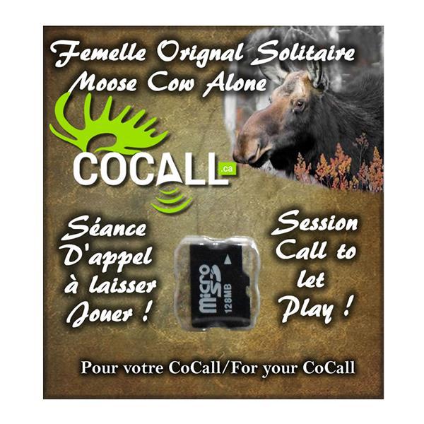 Cocall - Carte de sons d'orignal femelle solitaire